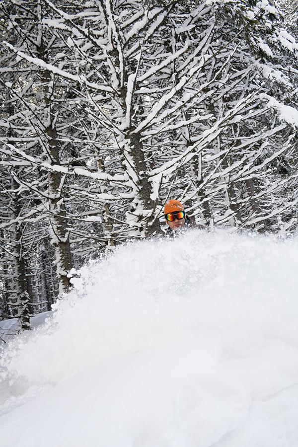 Zima s Optimalom ako má byť